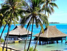 Brando Overwater Bungalows Bora Bora